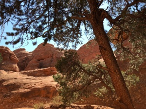 Exploring Arches National Park
