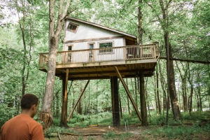 Tin Shed tree house
